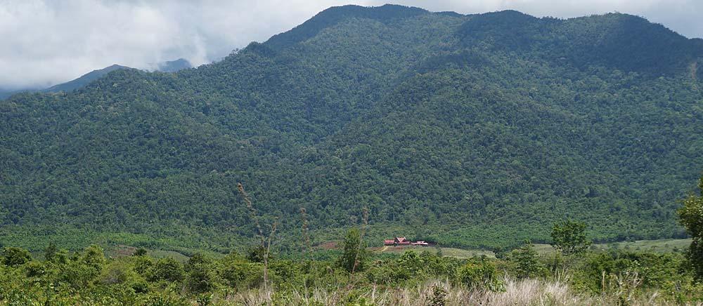 plantation house from far